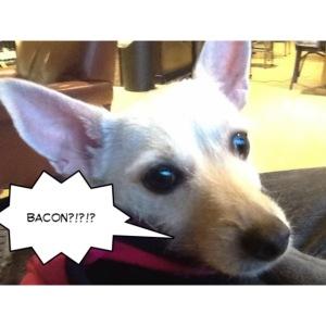 I smell bacon