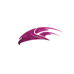Digitalized-Custom-Hawk-Pink.png