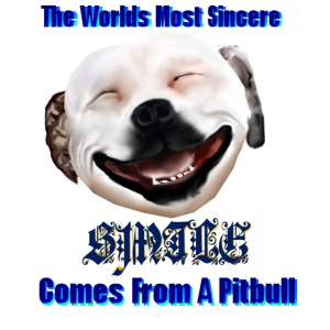 Greatest Smile -PITBULL