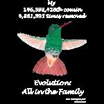 11_17 hummingbird Tshirt