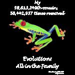 11_17 frog shirt black