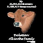 11_17 cow Tshirt black
