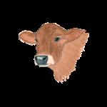 11_17 cow Tshirt LH