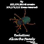 11_17 beetle Tshirt black