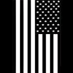 black flag12.jpg