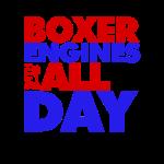 BoxeralldayRED-BLUEbig.png