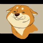 cute puppy 2018-2019