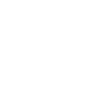 USAF COMBATIVES LOGO