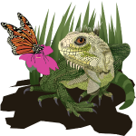 IguanaButterfly