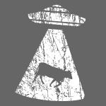 Invasion d'OVNI enlèvement de bétail domestique