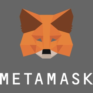 MetaMask Fox White Wordmark