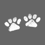 Two White Paws - Dog Lovers