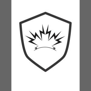 NOBLE SKYWAVE shield
