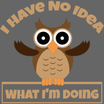 I Have No Idea What I m Doing owl