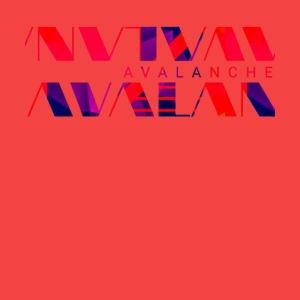 Avalanche vector