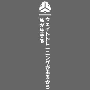 I Lift Jap v2