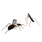 ant-astronaut-mantis-fight3_4000px.png