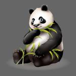 Hungry Panda