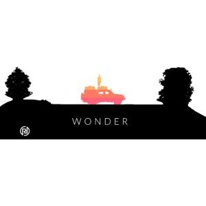 Wonder in Color