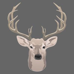 Beautiful buck with big antlers