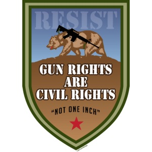 GunRightsCivilRightsResist png