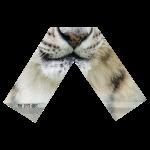 Snow Leopard (BOTTOM) - TRILLESTMIND
