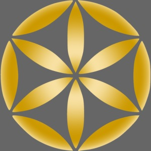 part of the flower of life in gold