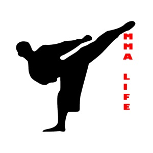 Mixed Martial arts such as MMA, BJJ by MMA LIFE