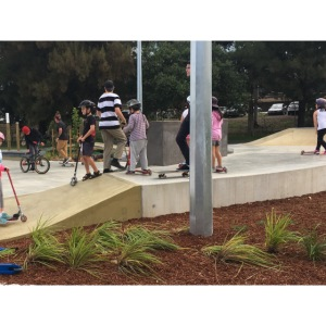 scate park no sleve t-shairt