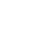Organize Black Votes