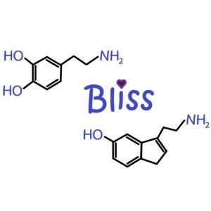 Bliss - happy chemicals (serotonin and dopamine)