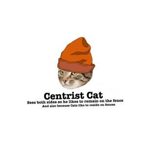 Hipster Centrist Cat