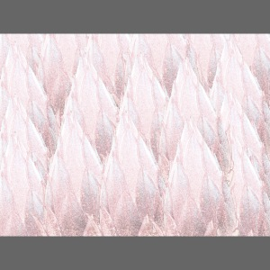 Australian pink flora sketch