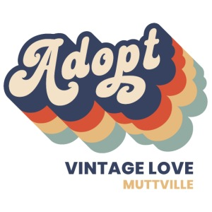 Adopt Vintage Love