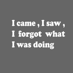 I came I saw I forgot