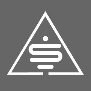 Logo blanc Sea of MInds