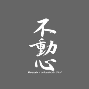 Fudoshin - the immovable unbreakable spirit