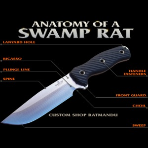 Anatomy of a Swamp Rat