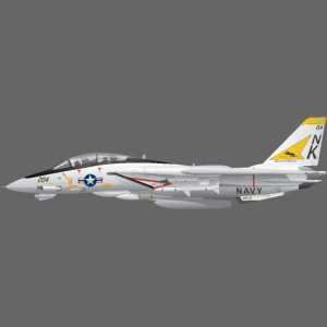 F-14 Tomcat Military Fighter Jet VF-21
