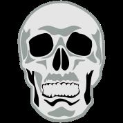 skull face on a bit creepy!