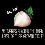 Turnip03.png