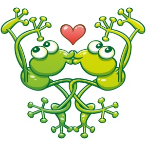 Frogs in love in choreography of jumps and kisses