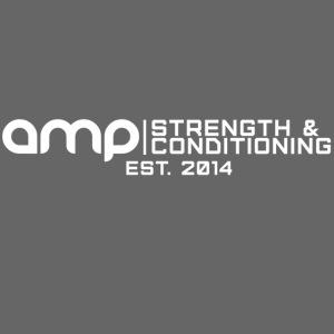 AMP Long Logo EST.