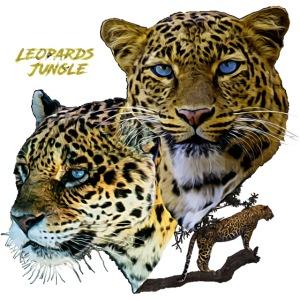 leopards jungle