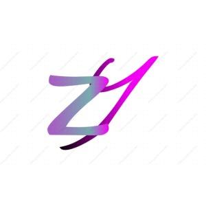 Zeox York