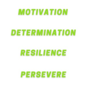 Seek Motivation Embrace Determination Discover Res