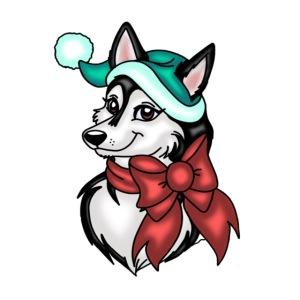 Kira the Christmas Siberian Husky!
