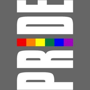Vertical Pride with LGBTQ Pride Flag