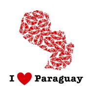 Design ~ paraguay_v5