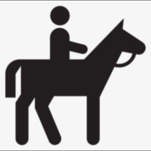 figure riding